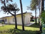 CK Ludor - Villa PINEDA